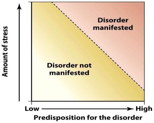 Diathesis stress model graph